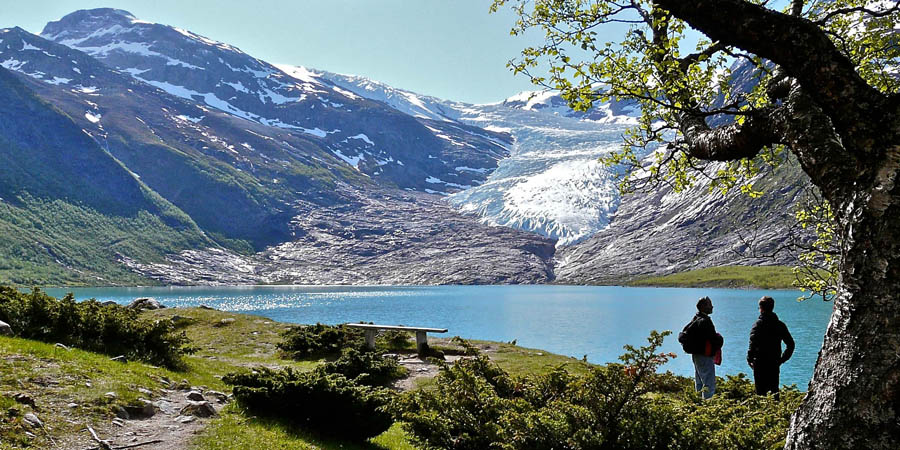 Ледники Норвегии